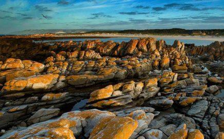 Agulhas National Park coastline