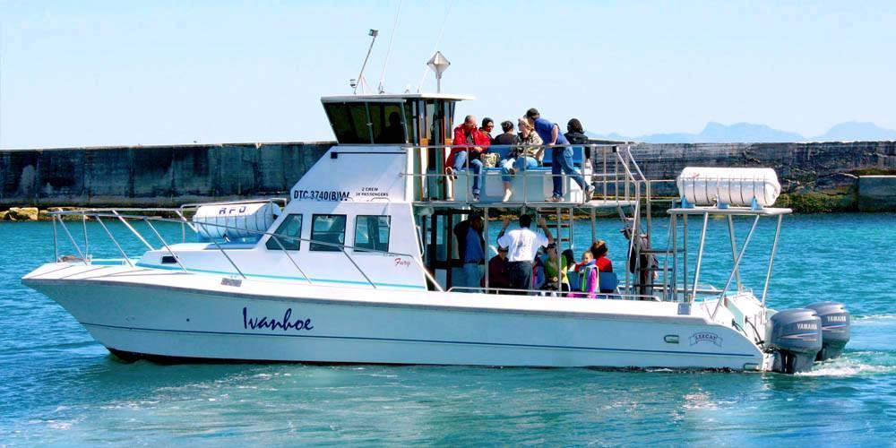 Ivanhoe Boat Based Whale Watching